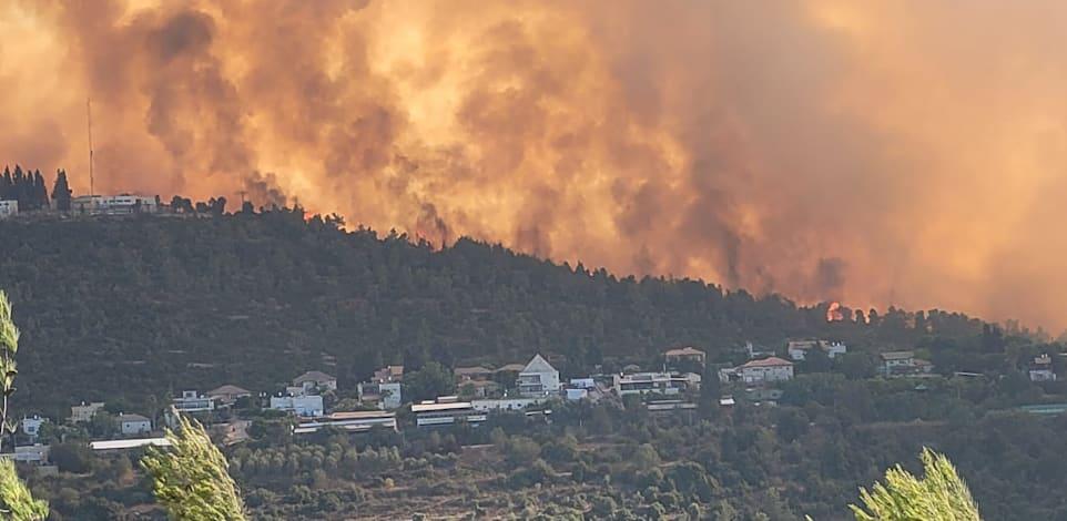 השריפה בהרי ירושלים / צילום: אריאל קדם, רשות הטבע והגנים