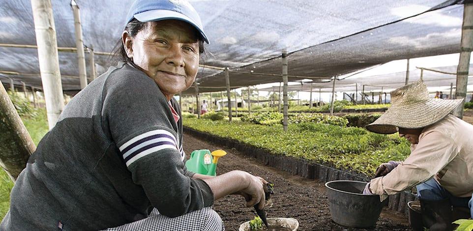 חקלאי קפה / צילום: נספרסו