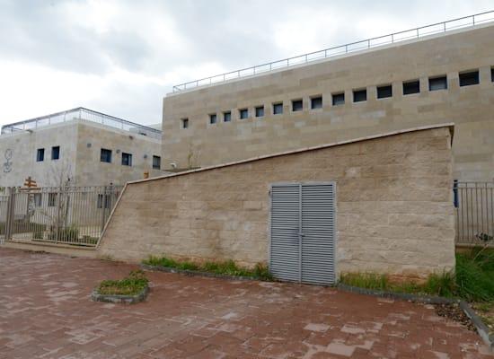 בית ספר תלי ברעננה / צילום: איל יצהר