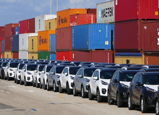 מכוניות מיובאות בנמל חיפה / צילום: Shutterstock