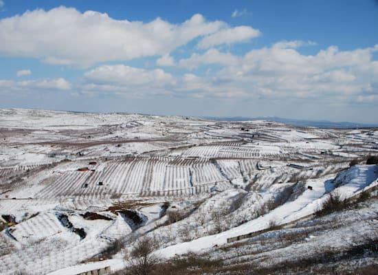 הר כרמים / צילום: יותם יעקבסון