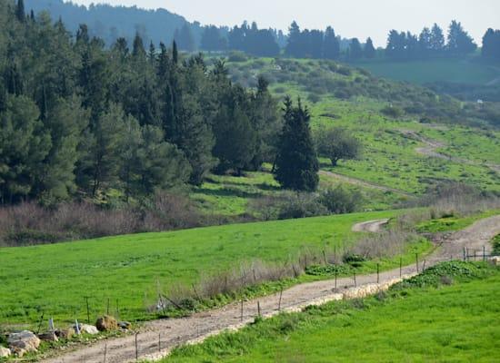 עמק השלום, פנינת נוף סמוך ליקנעם עילית / צילום: איל יצהר
