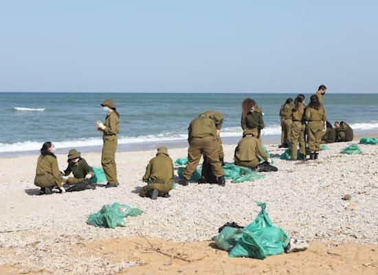"""חיילי צה""""ל עוסקים בניקוי ופינוי זפת מהגן הלאומי חוף השרון / צילום: דפנה בן נון"""