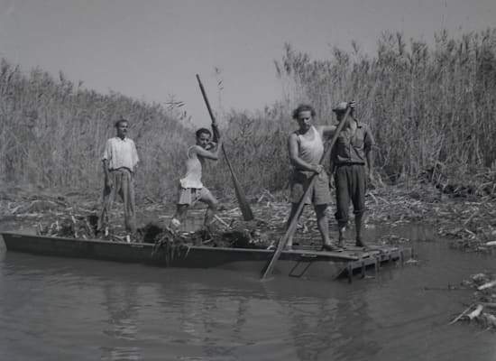 ייבוש ביצות החולה / צילום: בבעלות אוסף מיתר הספרייה הלאומית