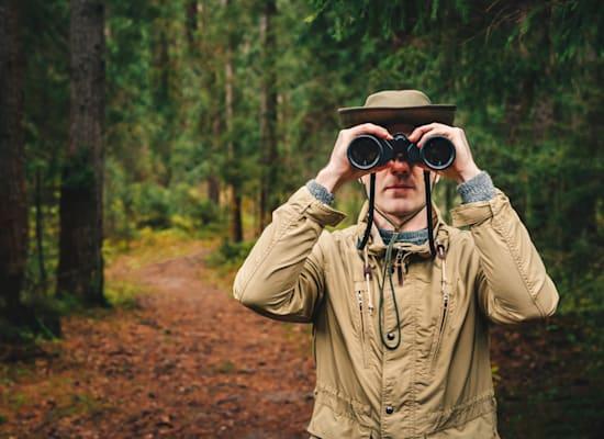 """שומרי היער"" / צילום: Shutterstock"