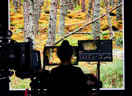 NVIDIA Omniverse Enterprise - הפלטפורמה הראשונה בעולם שמאפשרת לצוותי עיצוב 3D לעבוד יחדיו מסביב לעולם ובזמן אמת / צילום: באדיבות NVIDIA
