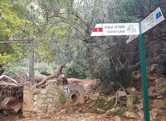 בדרך למערת קשת בגבול לבנון / צילום: אורלי גנוסר