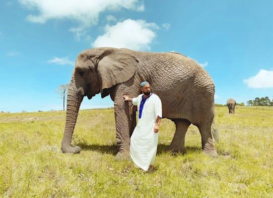 פארק הפילים בנאייזנה, דרום אפריקה / צילום: אדיר אסארף, באדיבות חן עמר