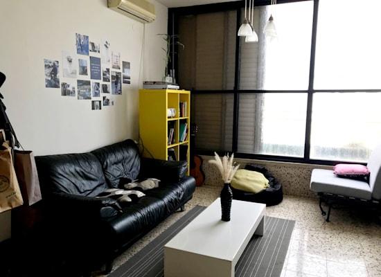 הדירה מבפנים / צילום: אלון משה