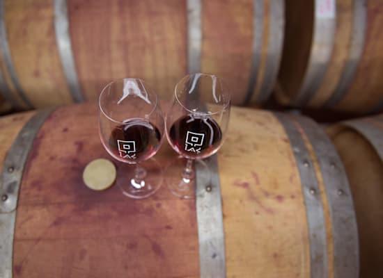 יין של גתו / צילום: דרור הדרי