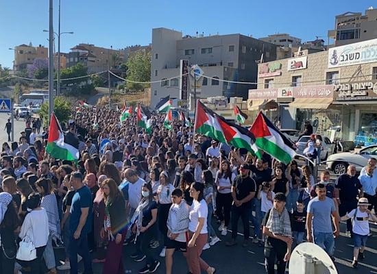 הפגנה נגד האלימות בישראל והמבצע בעזה בסחנין / צילום: הרשימה המשותפת
