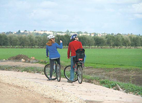 טיילת בית לחם. בין שדות עמק יזרעאל / צילום: אורלי גנוסר