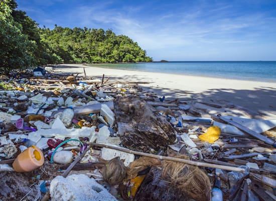 חוף מזוהם בתאילנד. הסטת השקעות לחברות נקיות / צילום: Shutterstock