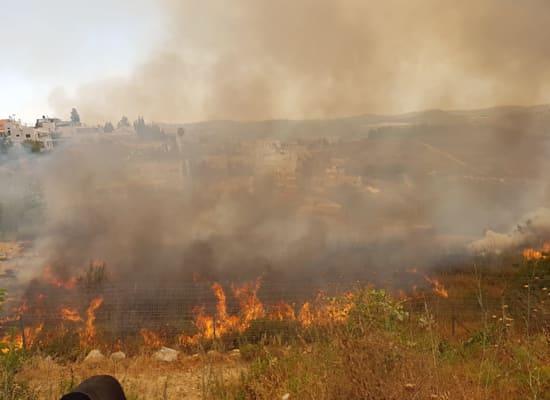 צמחייה שעולה באש באזור הרי ירושלים / צילום: כב