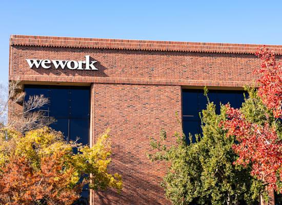 משרדי ווי וורק בארצות הברית / צילום: Shutterstock