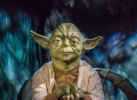 מאסטר יודה. מלחמת הכוכבים / צילום: Shutterstock