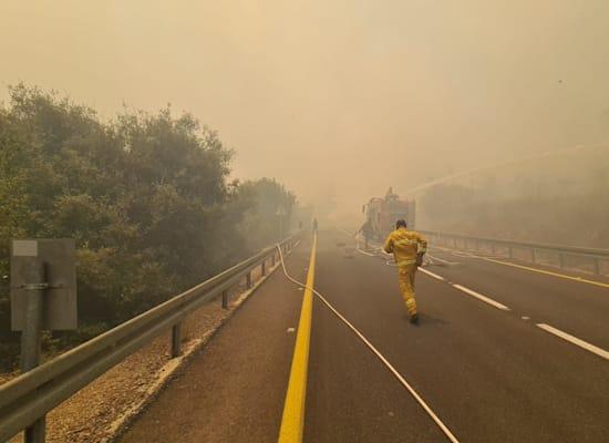 כבאים מנסים לכבות שריפות שפרצו באזור הרי ירושלים / צילום: דוברות כבאות והצלה ירושלים