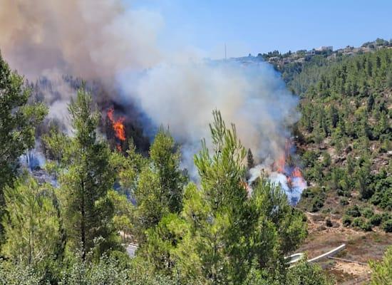 שריפות באזור הרי ירושלים / צילום: אריאל קדם, רשות הטבע והגנים