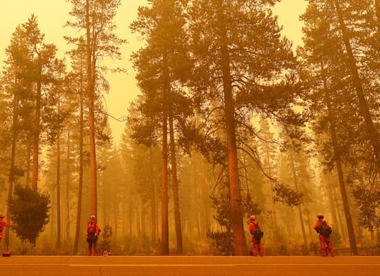 השריפה דיקסי ליד ווסטווד, קליפורניה, השבוע. השנייה בגודלה בהיסטוריה של המדינה / צילום: Reuters, Fred Greaves
