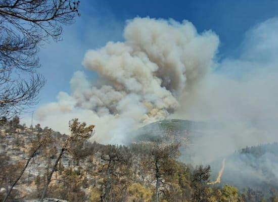 השריפה בהרי ירושלים / צילום: עמיר בלבן, החברה להגנת הטבע