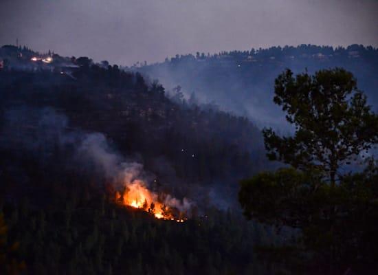 שריפת הענק משתוללת בהרי ירושלים / צילום: Reuters, AMMAR AWAD