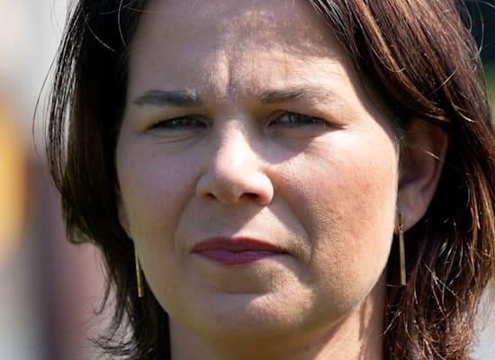 אנלנה ברבוק. שורה של שערוריות / צילום: Associated Press, Michael Sohn