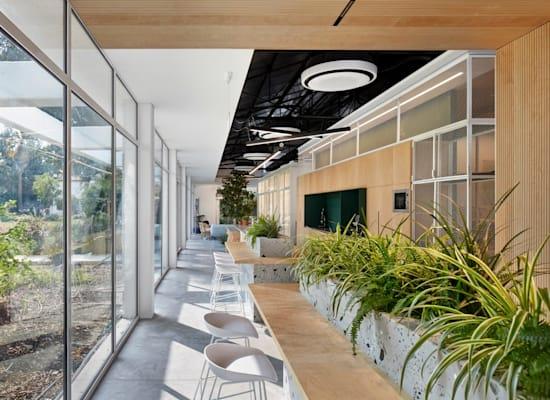 משרדי ארטליסט בבניין שהיה חדר האוכל באפיקים / צילום: Studio Shai Gil