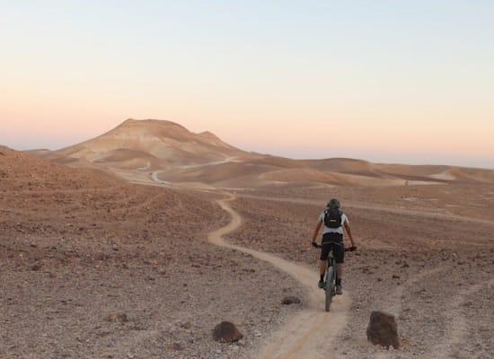 שביל האופניים החדש למצדה / צילום: הילל גלוזמן
