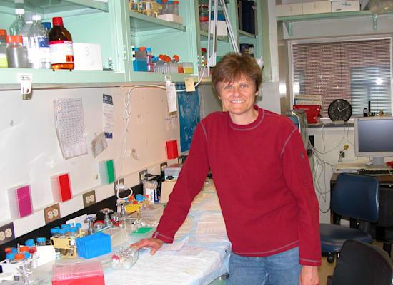 קריקו במעבדה באוניברסיטת פנסילבניה / צילום: תמונה פרטית