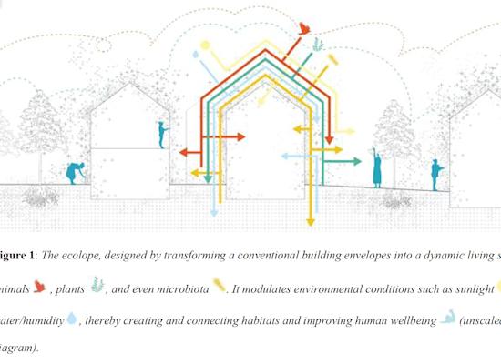 דיאגרמה של האקולופ, מחקר משותף לשבע אוניברסיטאות שנועד להפוך  חזיתות בתים לשטח חי / צילום: באדיבות  פרופ' יעקב גוברמן