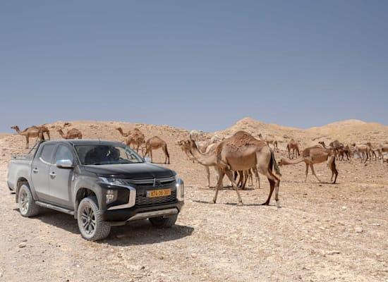 טיול ג'יפים במדבר יהודה / צילום: רונן טופלברג