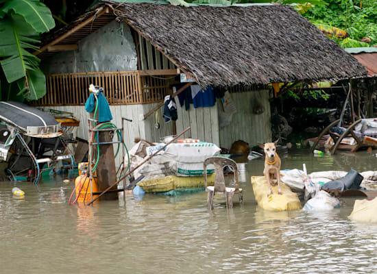 סופת ציקלון בפיליפינים השבוע / צילום: Associated Press
