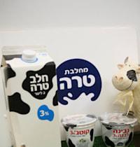 חלב של חברת טרה / צילום: עינת לברון