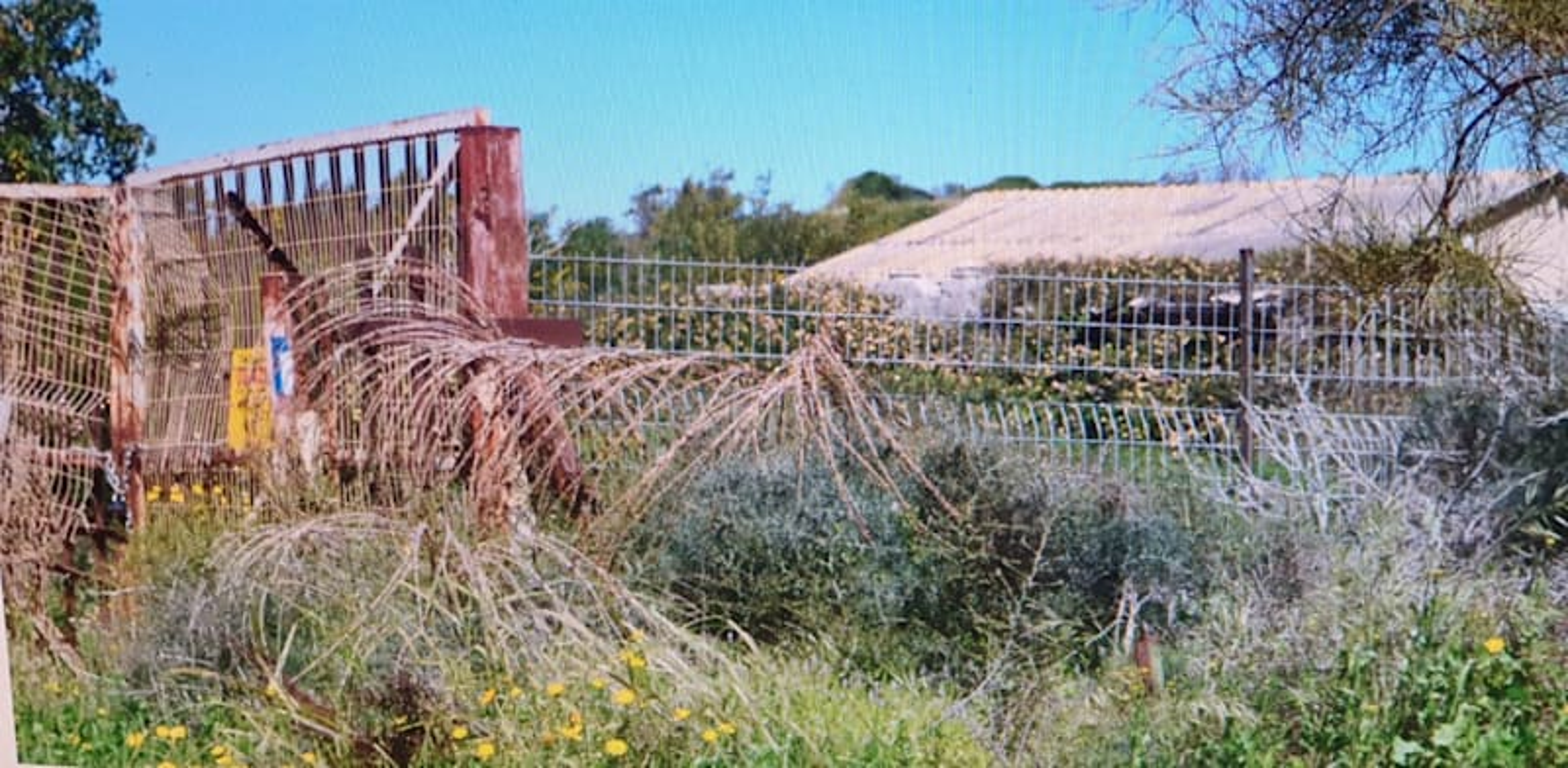 """הכניסה למפעל הישן של תע""""ש באפולוניה. היתר הבנייה מותנה בטיפול בקרקע המזוהמת / צילום: בר - אל"""