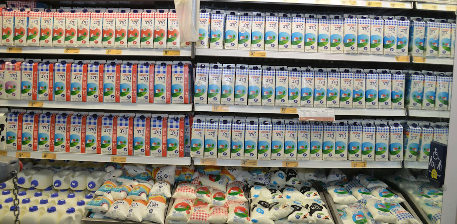 מדפי חלב בסופרמרקט / צילום: תמר מצפי
