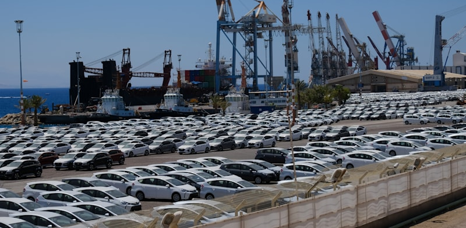 מכוניות חדשות בנמל אילת. דחייה באספקה בשל קשיים עולמיים / צילום: איל יצהר