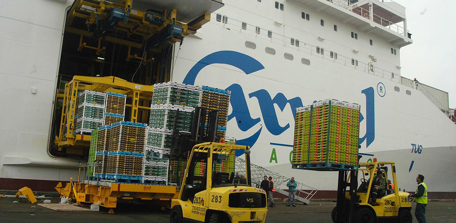 משלוח יצוא בנמל אשדוד / צילום: תמר מצפי