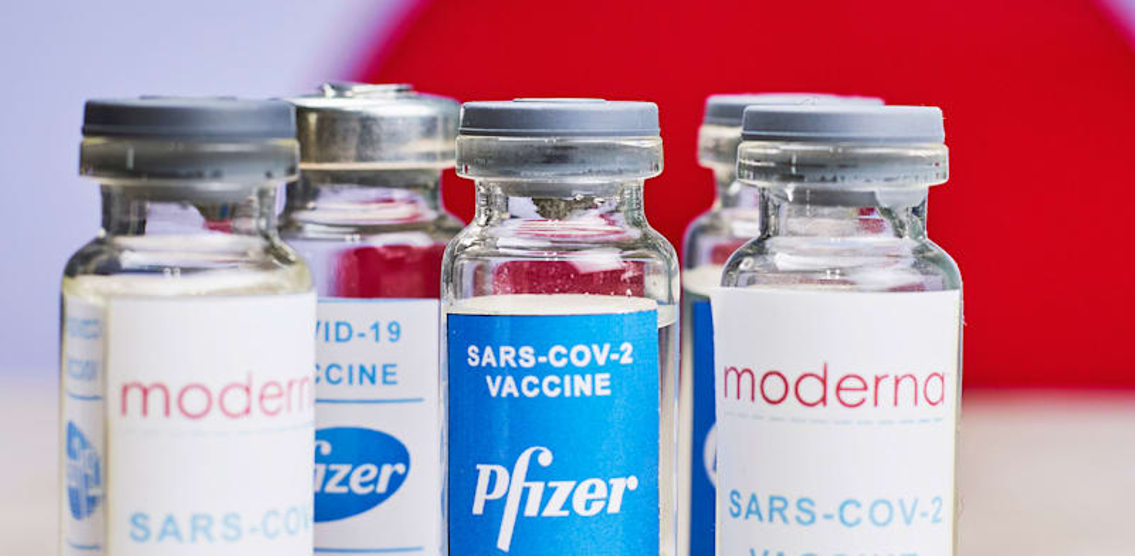 חיסונים לקורונה של מודרנה ופייזר / צילום: Shutterstock