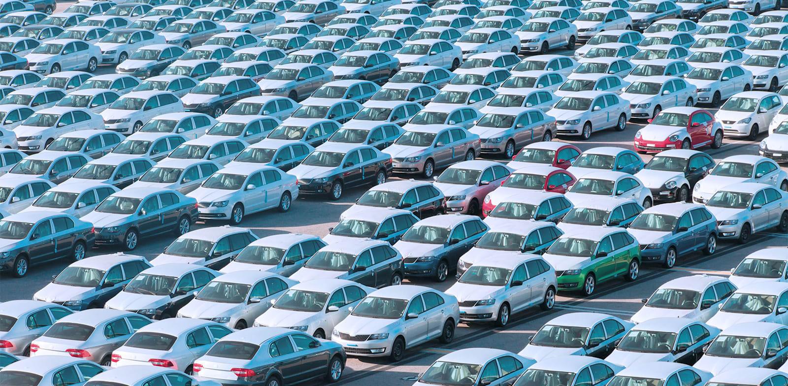 מכוניות חדשות חונות בנמל חיפה / צילום: Shutterstock