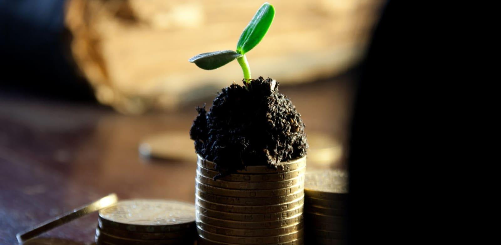 בנק LGT נמצא בחזית הקיימות והשקעות אימפקט ופתוח לאפיקי השקעה מסורתיים ואלטרנטיביים / צילום: באדיבות בנק LGT