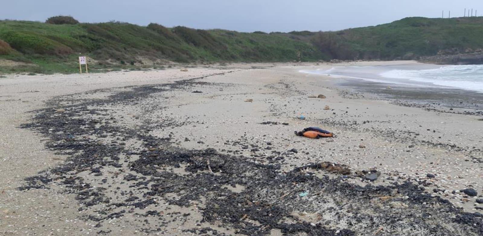 חוף דור מכוסה בזפת / צילום: יוסי אוזן, רשות הטבע והגנים