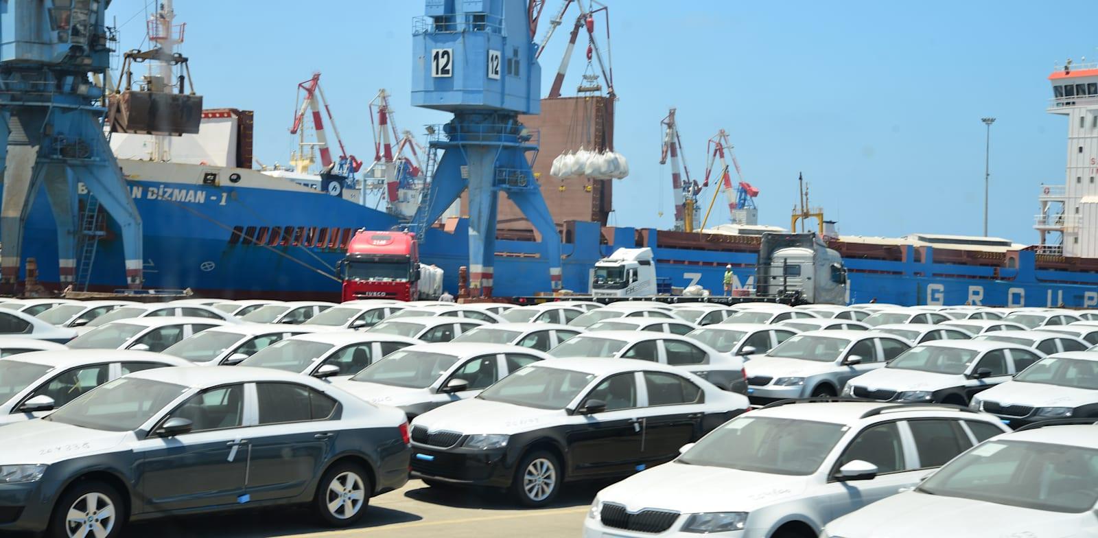 מכוניות חדשות בנמל אשדוד. נתוני צמיחה חזקים הודות לרכישות כלי רכב / צילום: תמר מצפי