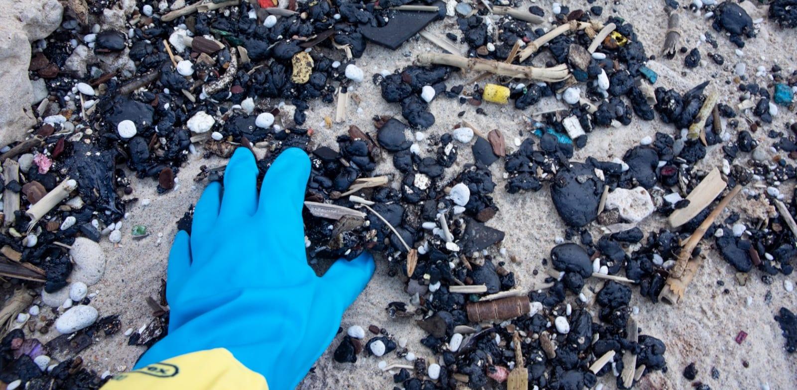 הזפת שנערמה באחד החופים / צילום: דפנה בן נון