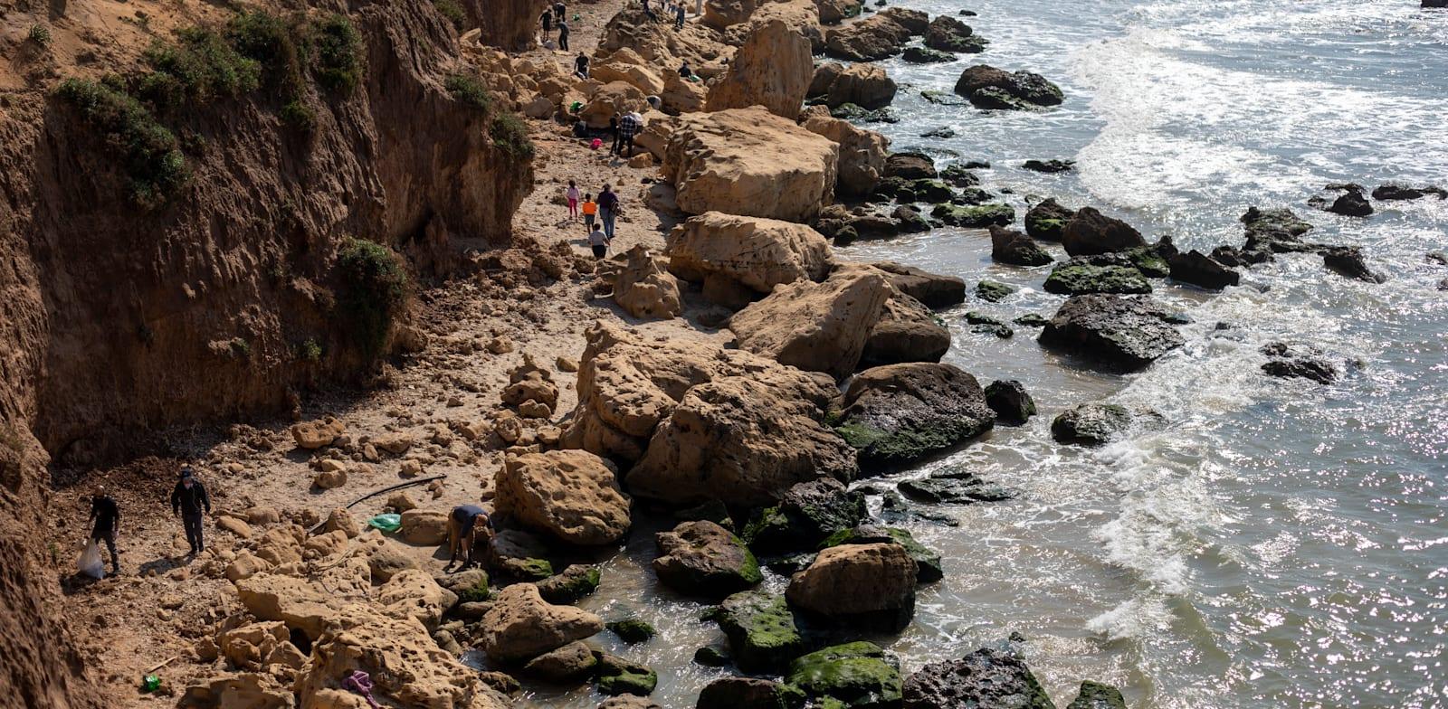 אסון הזפת בשמורת גדור. המדינה אינה מסוגלת לנטר את הנעשה בים / צילום: Associated Press, Ariel Schalit