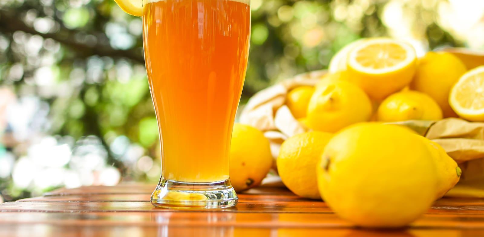 בירה קלוצמן. התחלה בפרדס בעמק חפר / צילום: Shutterstock