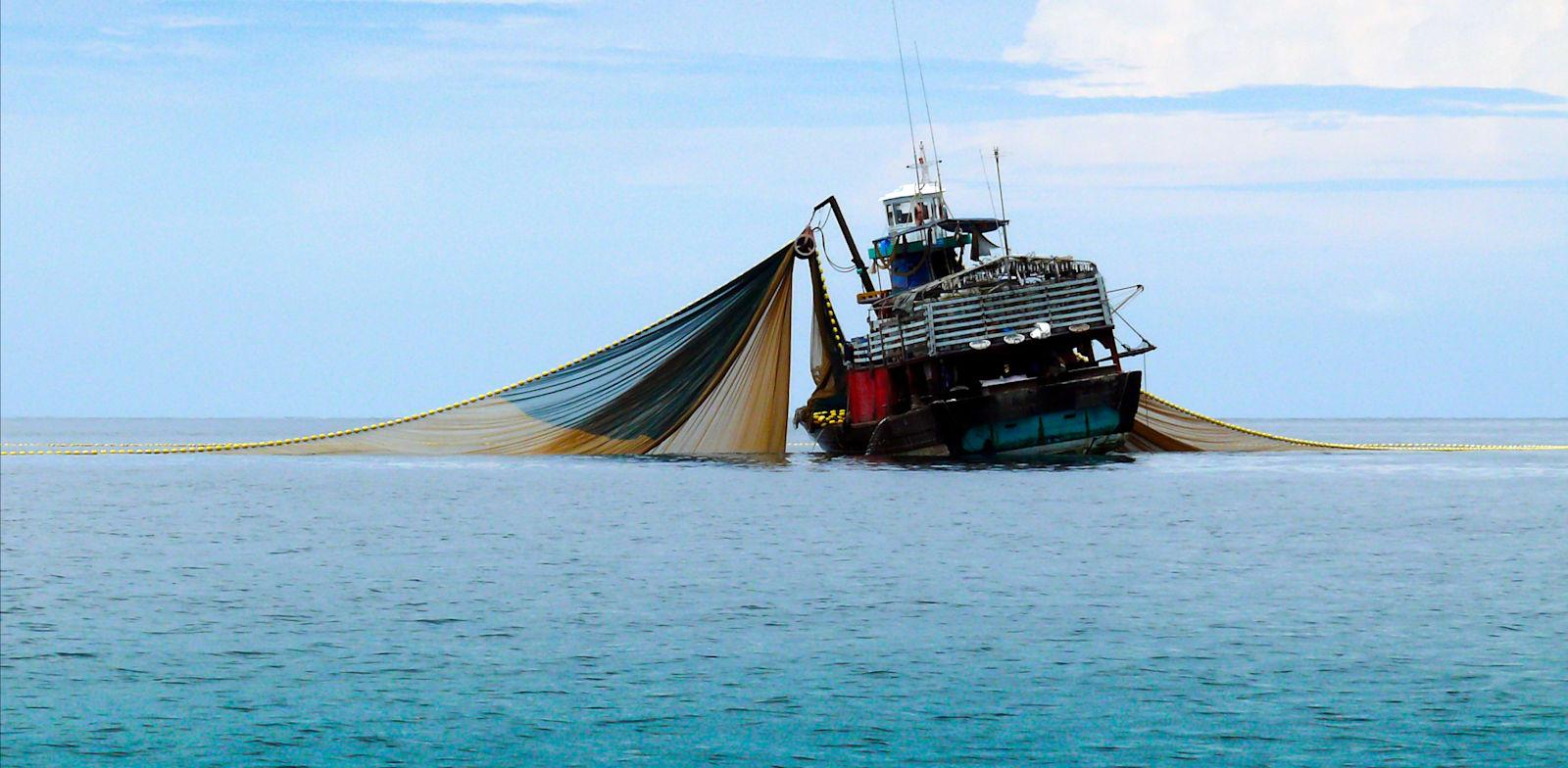 מכמורת דייג ענקית. פורסת רשת עד קרקעית הים וכורתת צמחייה ימית, דולפינים, צבי ים וחיות גדולות כקטנות / צילום: Shutterstock