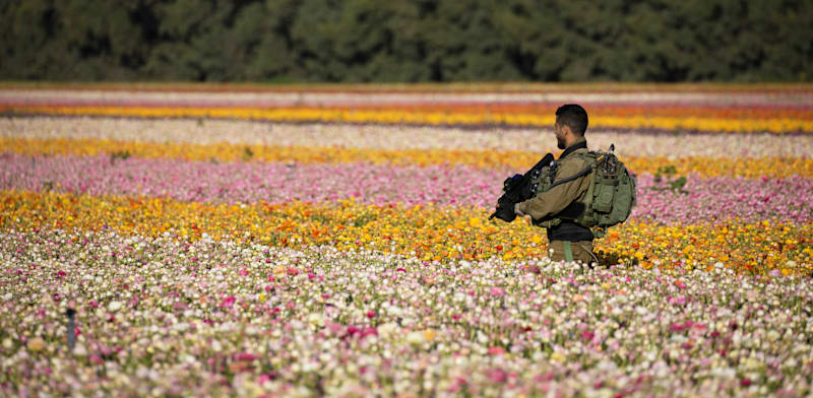 """חייל צה""""ל צועד בשדה סמוך לעזה / צילום: Reuters, Amir Cohen"""