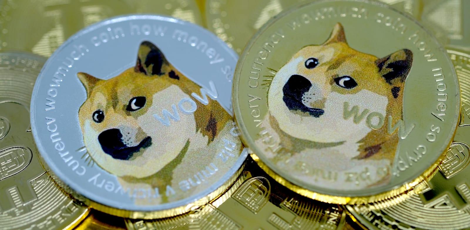 מטבע דוג'קוין / צילום: Reuters, Yuriko Nakao/AFLO
