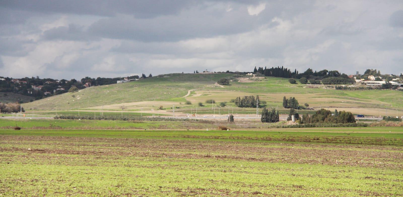נחל בית לחם. מסביב שטחי חקלאות שחלקם עדיין מוריקים / צילום: אורלי גנוסר
