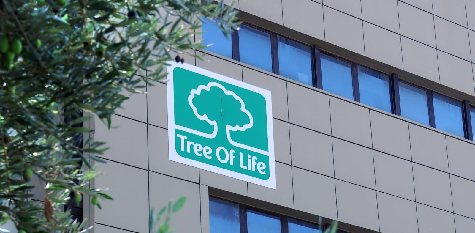 משרדי טרי אוף לייף / צילום: אתר החברה